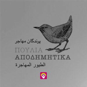 apodimitika_autokollito_3glwsses